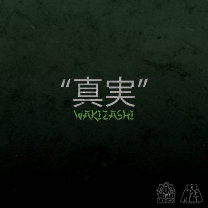 Shinjitsu slim WAKIZASI COVER FT